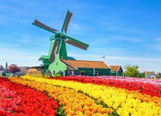 Các điểm đến hấp dẫn du khách khi đặt chân tới Hà Lan